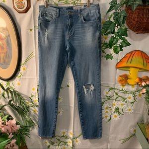 AG Anthro light wash Noah straight leg jeans